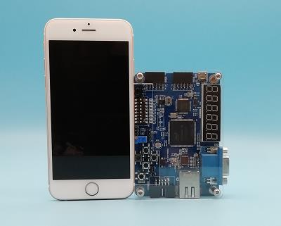 pocket FPGA study Boards